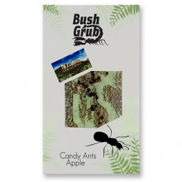 Bush Grub Candy Ants Bar