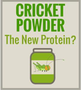 Cricket Flour & Powder – The New Protein Powder?