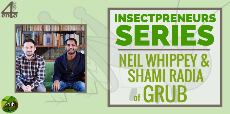 Insectpreneurs: Neil Whippey of Grub