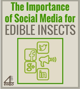 The importance of Social Media for edible insects … The Story Behind 4Ento's Online Presence!