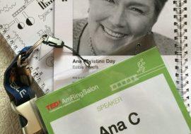 TEDxAmRing Vienna June 1215