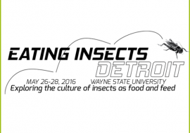 Eating Insects Detroit