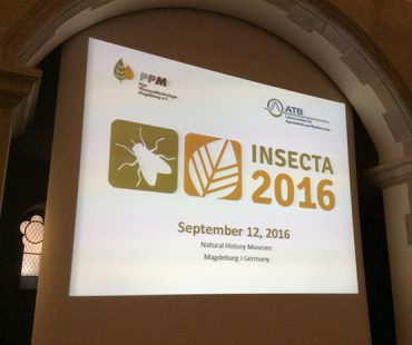 Insecta 2016 Conference