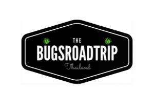 bug-road-trip