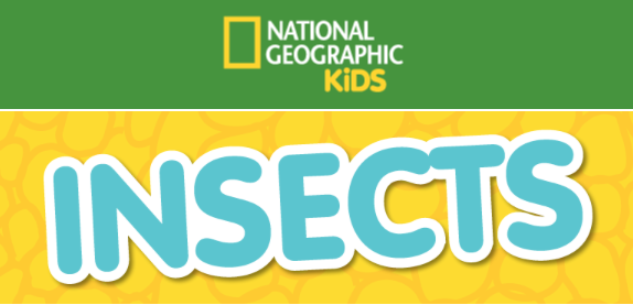 http://kids.nationalgeographic.com/animals/hubs/insects/