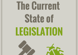 Current State of Legislation For Insects As Food