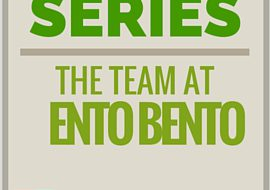 Insectpreneurs Series: The Team at Ento Bento